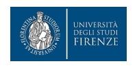 University of Florence
